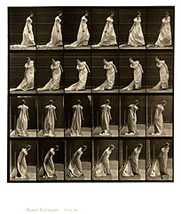 Animal locomotion. Plate 231 (Boston Public Library).jpg