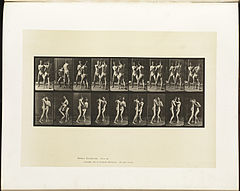 Animal locomotion. Plate 337 (Boston Public Library).jpg