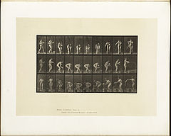 Animal locomotion. Plate 440 (Boston Public Library).jpg