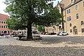 Ansichten Albrechtsburg außen August 2017 (4).jpg