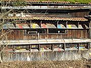 Bienenhäuser aus Holz waren früher weiter verbreitet, die verschiedenfarbigen Anflugbretter sollen den Bienen die Orientierung erleichtern
