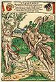 Apoll und Daphne 1502 ubs G 2 II.jpg