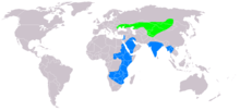 Light Green - nesting area, Blue - wintering area, Dark Green - resident all year