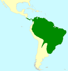 A map showing South America and Central America. A green colour covers the southern portion of Central America and most of South America, except the western coast and the southern portion of the continent.