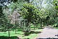 ArboretumJBUNAM.JPG