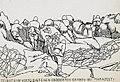 Armata 9 germana - Album foto - Gravura - pozitie a trupelor romane ocupata in luptele de la Marasesti.jpg