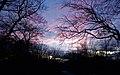 Around Rivington, Lancashire - panoramio.jpg