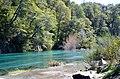 Arroyo Ruca Malen - Neuquen - panoramio.jpg