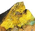 Astrocyanite-(Ce)-Kamotoite-(Y)-Uraninite-rad08-10b.jpg