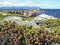 Atlantic Ocean coast - panoramio.jpg
