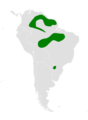Atticora melanoleuca distribution map.png