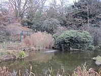 Avenue House Grounds pond.JPG
