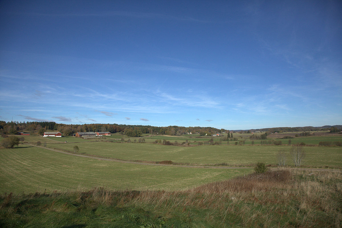 Axtorna fields.jpg