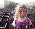 BARBECU COAL-HOW IT IS MADE - panoramio - HALUK COMERTEL (2).jpg