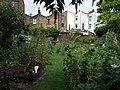 Back gardens along Church Walk - geograph.org.uk - 1598343.jpg