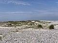 Baie Somme Hourdel - Cayeux-sur-Mer (FR80) - 2021-05-29 - 88.jpg