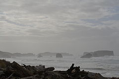 Bandon State Nature Area (Bandon, Oregon).jpg