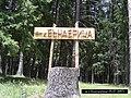 Bansko, Bulgaria - panoramio (4).jpg