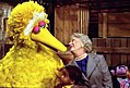 Barbara Bush and Big Bird.jpg