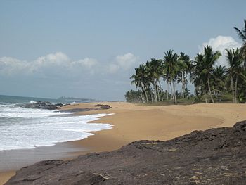 Beach with palms in Ghana, Westafrica