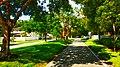 Beauty of the Walk - panoramio.jpg