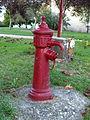 Beauvoir-FR-89-bouche d'incendie-fontaine-11.jpg