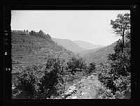 Beit Ed-Din. The Shehab Palace (held as a national monument). Lebanon. Terraced and wooded valley from Beit Ed-Din LOC matpc.15452.jpg