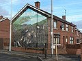 Belfast, an apolitical mural - geograph.org.uk - 611300.jpg