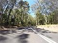 Benandarah NSW 2536, Australia - panoramio (9).jpg