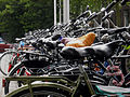 Bicycles parked 001.jpg