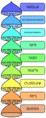 Biological classification L Pengo vflip.hy.png