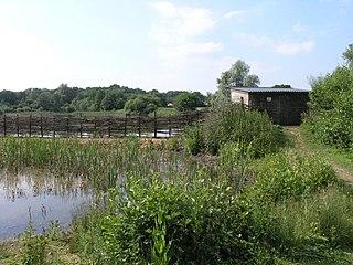 Sevenoaks Gravel Pits