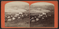 Bird eye view of Havana N. Y., from Robert N. Dennis collection of stereoscopic views.png