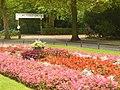 Blumen im Stadtpark Steglitz (Flowers in Steglitz Town Park) - geo.hlipp.de - 29183.jpg