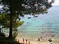 Bol beach - panoramio.jpg