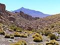 Bolivian Altiplano 2005 - panoramio (6).jpg