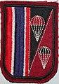 Border Patrol Police, Police Aerial Reinforcement Unit (PARU) - panoramio.jpg
