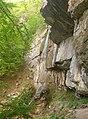 Borov kamyk waterfall, Vrachanski Balkan - spring 2012 - 3.jpg