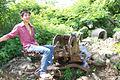 Boud on top of gun on top of Phousi, Luang Prabang (6032126119).jpg