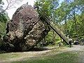 Bowder Stone - geograph.org.uk - 1515039.jpg