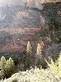 Boynton Canyon Trail, Sedona, Arizona - panoramio (68).jpg