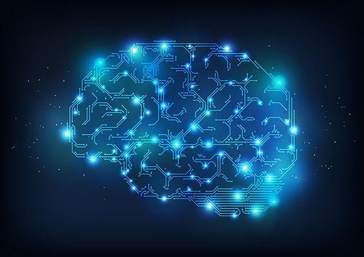 Brain anatomy medical head skull digital 3 d x ray xray psychedelic 3720x2631