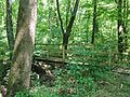Bridge on Spice Bush Trail - panoramio (1).jpg