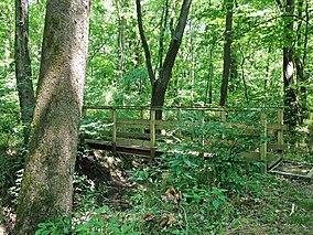 Bridge on Spice Bush Trail - panoramio (1).jpg