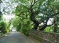 Bridge over the Nickey Line on Cherry Tree Lane-geograph-3637955-by-David-Howard.jpg