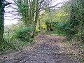 Bridleway, The Green - geograph.org.uk - 1584315.jpg