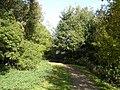Bridleway Between Elvaston Castle Park and the Derwent - geograph.org.uk - 1023442.jpg