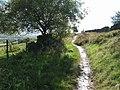Bridleway to Broadhurst - geograph.org.uk - 57872.jpg