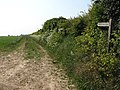 Bridleway to East Ruston - geograph.org.uk - 812061.jpg