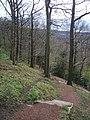 Brincliffe Edge Wood - geograph.org.uk - 1419909.jpg